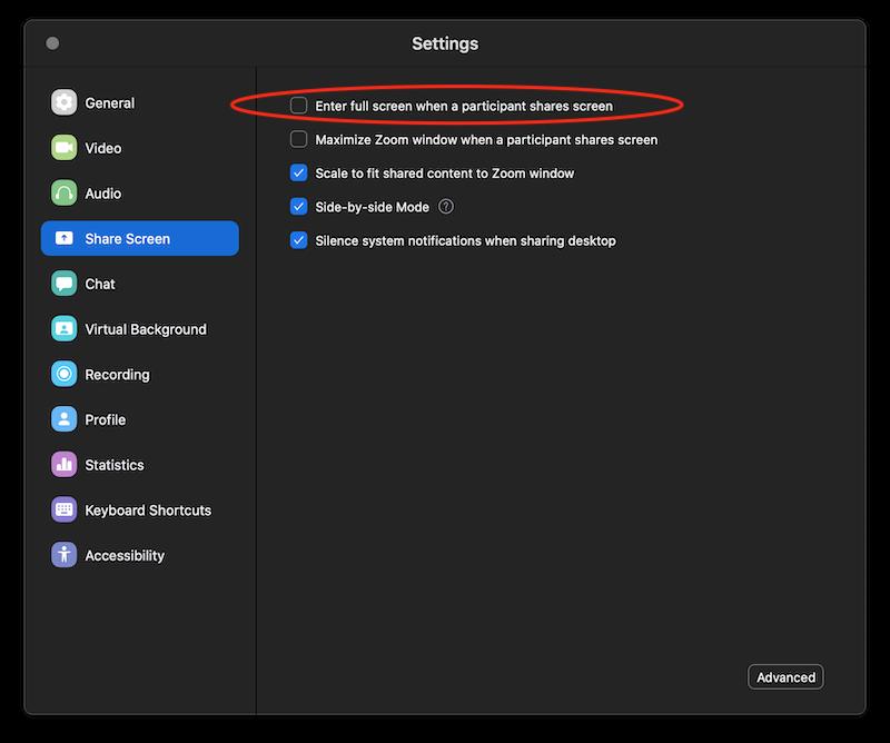 Screenshot of Zoom settings